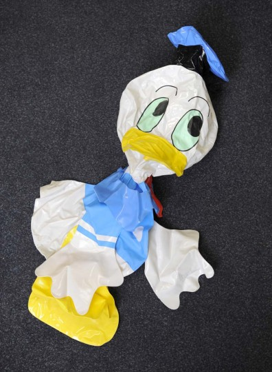 The Schaefer collection has several rubber ducks like the one that was part of the National Aquarium publicity stunt. But archives staff can't say for sure whether they are the actual duck. (Lloyd Fox/Baltimore Sun)