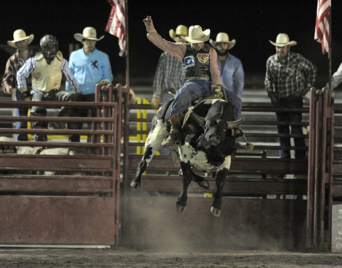 Shane Stiffler rides a bull during his winning ride. (Lloyd Fox/Baltimore Sun)