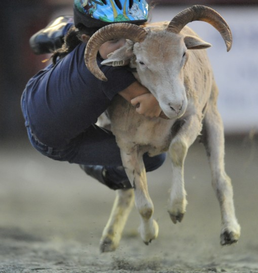 Natalie Vora, 7, of Ijamsville, Md., hangs on during the mutton busting event. Contestants must be at least four years old and weigh below 50 pounds to compete. They hang on to the sheep for a qualifying time of six seconds and then they are given a score. (Lloyd Fox/Baltimore Sun)