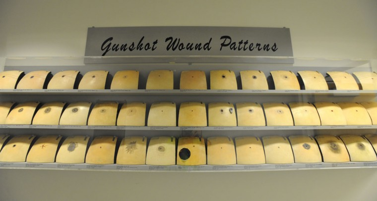 A study on gunshot wound patterns is on display at the Office of the Chief Medical Examiner in West Baltimore. (Lloyd Fox / Baltimore Sun Photo)