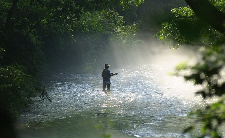 A fisherman spent the morning on the Gunpowder River on June 21, 2001. (Gene Sweeney, Jr./Baltimore Sun)