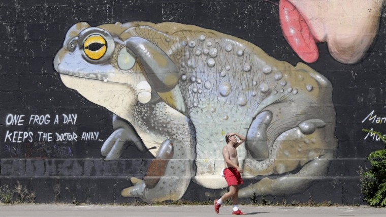 A man passes a graffiti along the Danube canal on a hot summer day in Vienna July 23, 2013. Austria has been hit by a heat wave with temperatures in Vienna rising up to 36 degrees Celsius (97 Fahrenheit) in the next days. (Leonhard Foeger/Reuters photo)