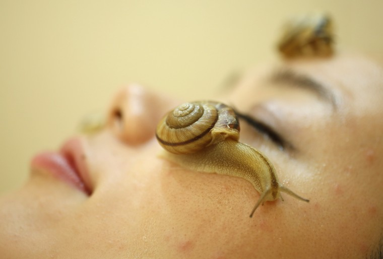 "Snails crawl on the face of a woman during a demonstration of a new beauty treatment at Clinical-Salon Ci:z.Labo in central Tokyo. Clinical-Salon Ci:z.Labo, which began the unique facial earlier this week, offers the 10,500 yen ($110) five-minute session with the snails as an optional add-on for customers who apply for a ""Celeb Escargot Course"", an hour-long treatment routine of massages and facials based on products made from snail slime that costs 24,150 yen. According to a beautician at the salon, the snail slime is believed to make one's skin supple as well as remove dry and scaly patches. (Issei Kato/Reuters photo)"