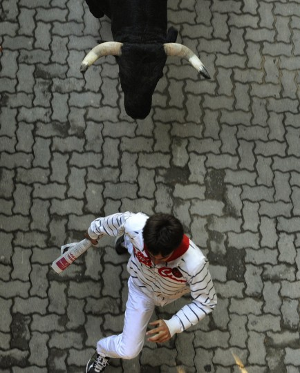 A runner sprints in front of a Dolores Aguirre Ybarra fighting bull at the entrance to the bull ring during the second running of the bulls of the San Fermin festival in Pamplona. (Eloy Alonso/Reuters photo)