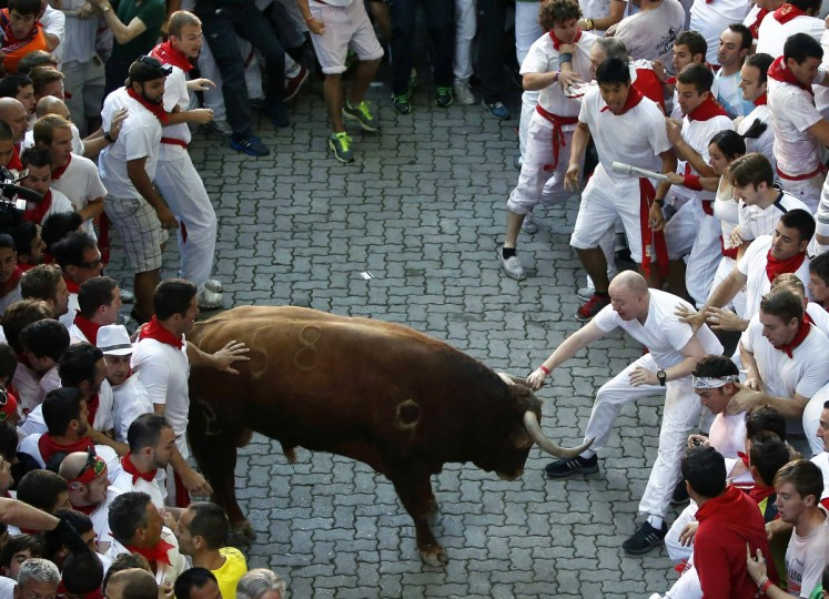 A runner grabs the horn of an Alcurrucen fighting bull at the entrance to the bull ring during the first running of the bulls of the San Fermin festival in Pamplona. (Susana Vera/Reuters photo)