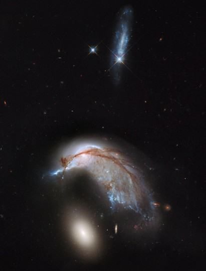This NASA Hubble Space Telescope image, showing what looks like the profile of a celestial bird, belies the fact that close encounters between galaxies are a messy business. This interacting galaxy duo is collectively called Arp 142. (Photo courtesy of NASA, ESA, and the Hubble Heritage Team)