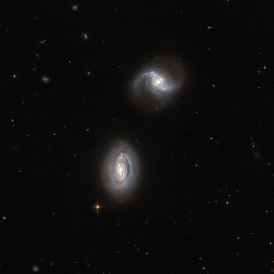 Looking toward the constellation of Triangulum (The Triangle), in the northern sky, two very similar galaxies are close enough to one another to be bound together by gravity, although no gravitational disturbance can yet be seen in the image. (Handout photo courtesy of ESA/Hubble and NASA)