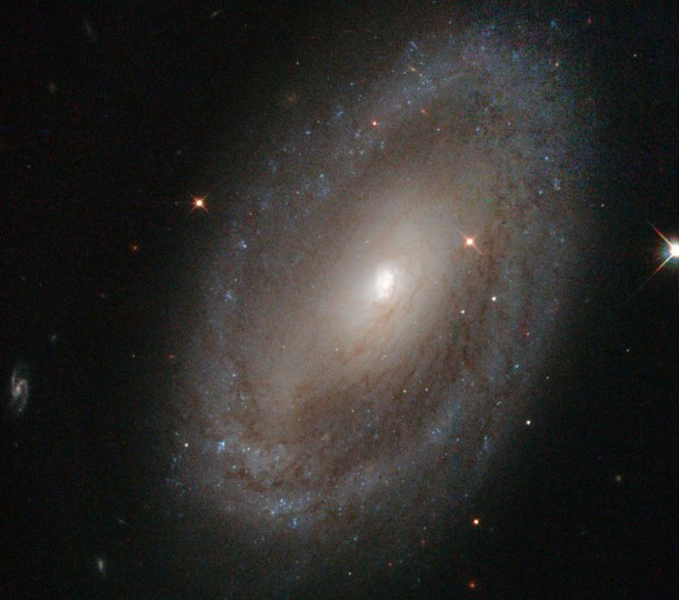 This is the spiral galaxy NGC 3185, located some 80 million light-years away from Earth in the constellation of Leo (The Lion). This image, taken by the Hubble Space Telescope, shows the galaxy's spiral arms, which can be traced from the center of the galaxy out towards the rim, where they appear to meet a sparkling blue disc. (Handout photo courtesy of ESA/Hubble and NASA)