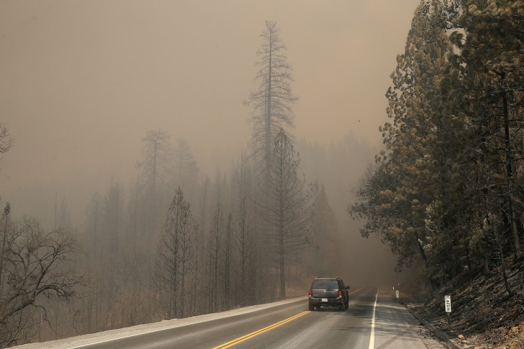 Trees charred by the Rim Fire are seen along US highway 120 on August 21, 2013 in Buck Meadows, California. The Rim Fire continues to burn out of control and threatens 2,500 homes outside of Yosemite National Park. Over 400 firefighters are battling the blaze that is only 5 percent contained. (Justin Sullivan/Getty Images)