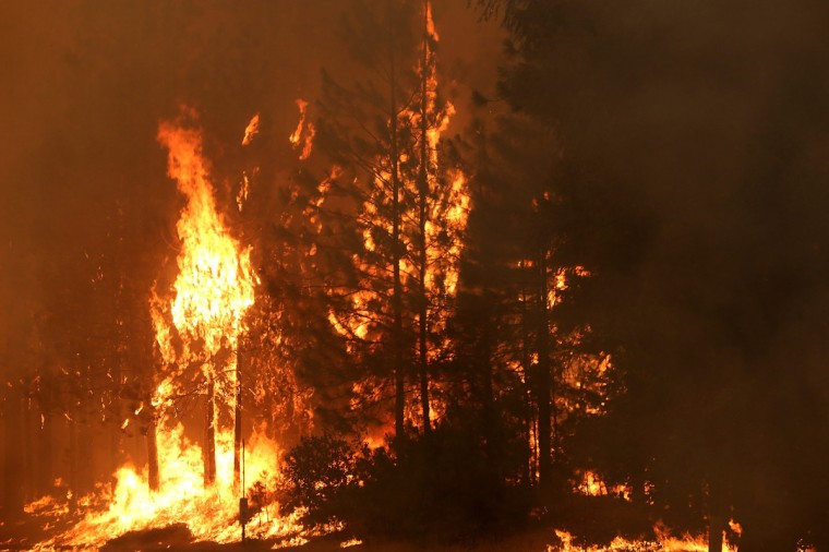 Fire consumes trees along US highway 120 as the Rim Fire burns out of control on August 21, 2013 in Buck Meadows, California. The Rim Fire continues to burn out of control and threatens 2,500 homes outside of Yosemite National Park. Over 400 firefighters are battling the blaze that is only 5 percent contained. ((Justin Sullivan/Getty Images)