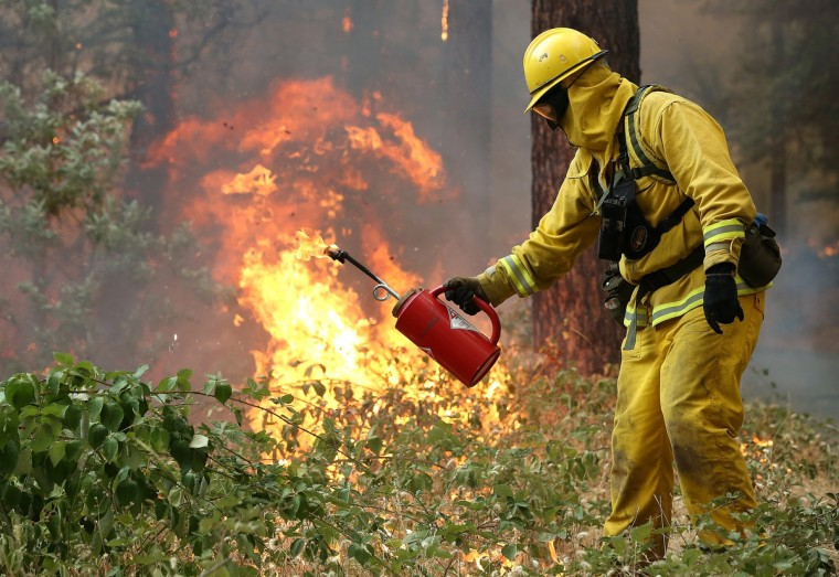 A firefighter from Ebbetts Pass Fire District uses a drip torch to light a back fire as they battle the Rim Fire on August 21, 2013 in Groveland, California. The Rim Fire continues to burn out of control and threatens 2,500 homes outside of Yosemite National Park. Over 400 firefighters are battling the blaze that is only 5 percent contained. (Justin Sullivan/Getty Images)