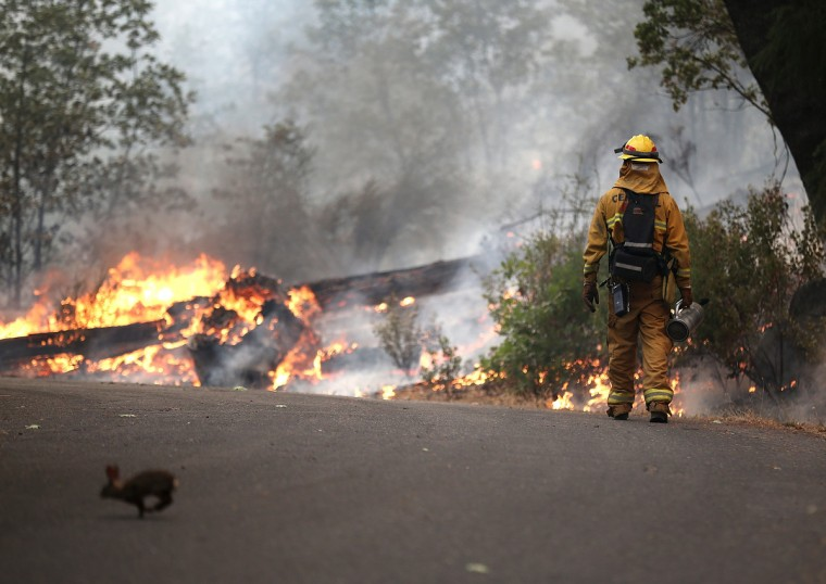 A rabbit runs across the road as a firefighter from Ebbetts Pass Fire District monitors a back fire as he battles the Rim Fire on August 21, 2013 in Groveland, California. The Rim Fire continues to burn out of control and threatens 2,500 homes outside of Yosemite National Park. Over 400 firefighters are battling the blaze that is only 5 percent contained. (Justin Sullivan/Getty Images)