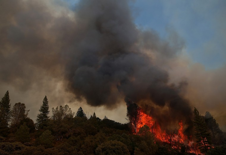 Fire consumes trees along US highway 120 as the Rim Fire burns out of control on August 21, 2013 in Groveland, California. The Rim Fire continues to burn out of control and threatens 2,500 homes outside of Yosemite National Park. Over 400 firefighters are battling the blaze that is only 5 percent contained. (Justin Sullivan/Getty Images)