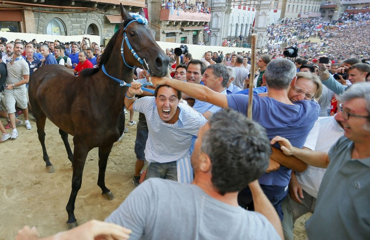 Supporters of the Contrada of Wave celebrate the victory of the Palio horse race in Siena on August 16, 2013. (Fabio Muzzi/Getty Images)