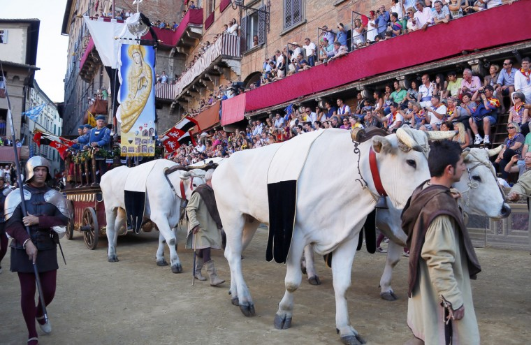 The Palio is carried on special wagon pulled by oxen prior to the Palio horse race in Siena on August 16, 2013. (Fabio Muzzi/Getty Images)