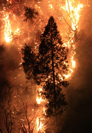 This photo obtained August 23, 2013 courtesy of the US Forest Service, shows the Rim Fire as it burns near Yosemite National Park, California. The wildfire outside Yosemite National Park, is one of more than 50 major brush blazes burning across the western United States , has more than tripled in size overnight and still threatens about 2,500 homes, hotels and camp buildings. Fire officials say that the blaze burning in remote, steep terrain has grown to more than 84 square miles (135 km) and was only 2 percent contained on August 22, 2013, down from 5 percent a day earlier. (Getty Images)