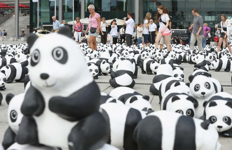 Visitors walk among 1,600 styrofoam panda bear sculptures displayed in front of Hauptbahnhof main railway station by the World Wildlife Fund on August 5, 2013 in Berlin, Germany. The WWF is celebrating its 50th anniversary and is drawing attention to the fact that only 1,600 panda bears remain in the wild. The display will soon travel to 25 other cities in Germany. (Sean Gallup/Getty Images)