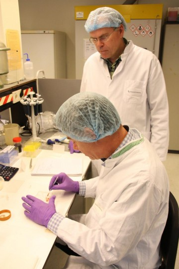 In this handout picture received via Ogilvy PR on August 5, 2013 Professor from Maastricht University Mark Post (R) works on creating the world's first lab-grown beef burger in a laboratory at the University in Maastricht. (Maastricht University via AFP/Getty Images)