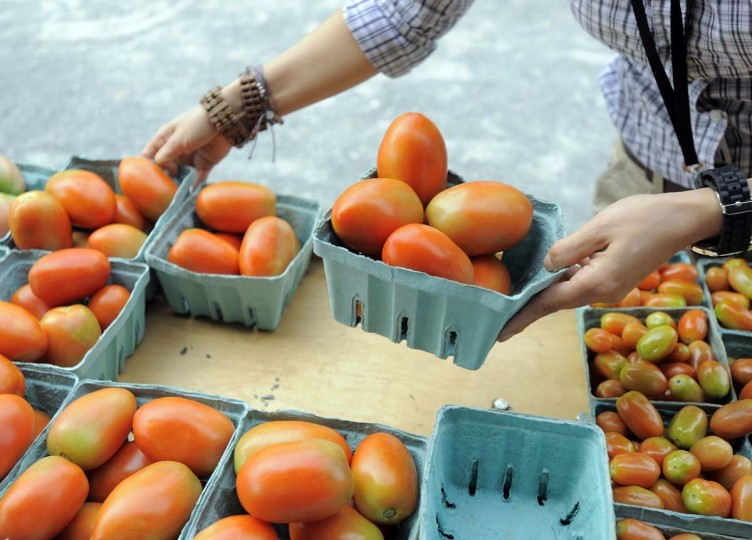 Jenny Perez scours local farmers' markets for produce she uses in the Orioles' clubhouse kitchen. Here she looks over tomatoes at a farmers' market at Boordy Vineyards in Hydes. (Lloyd Fox/Baltimore Sun Photo)