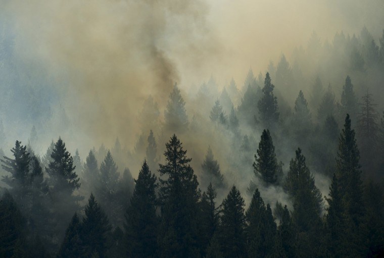 The Rim Fire burns in the Stanislaus National Forest in California, Tuesday August 20, 2013. (Andy Alfaro/Modesto Bee/MCT)