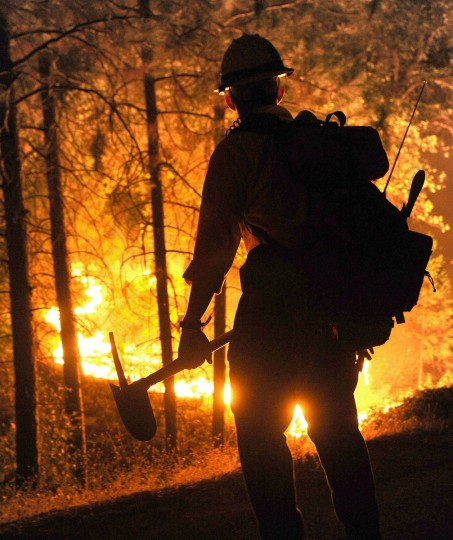 Big Bear firefighter Jon Curtis keeps a close eye on a 'slop over' fire that jumped Hwy 120 just east of Hardin Flat Road while fighting the Rim Fire, which continues to conflagrate uncontrolled in the Stanislaus National Forest in California, Saturday, August 24, 2013. (Elias Funez/Modesto Bee/MCT)