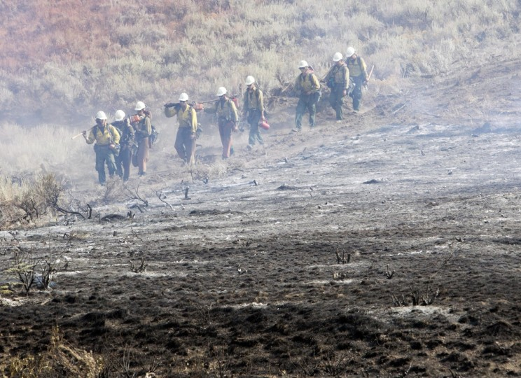 A team of hotshots walk along a fire line near homes on Croy Road and the Rotorun ski hill west of Hailey, Idaho, Saturday, August 17, 2013. The Beaver Creek fire moved through the area in the early hours Saturday morning. (Darin Oswald/Idaho Statesman/MCT)