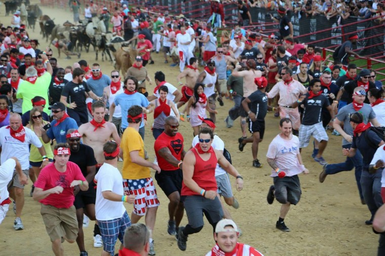 Runners gear up for the running of the bulls at the Great Bull Run held at the Virginia Motorsports Park.(Credit: Kaitlin Newman)
