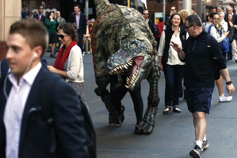 "A performer dressed in a Tyrannosaurus rex dinosaur costume walks amongst pedestrians during a publicity event in central Sydney. The performance was a promotion for an upcoming exhibition at the Australian Museum titled ""Tyrannosaurs - Meet the Family"" which showcases ancestors of the Tyrannosaurus rex, with more than 10 life-size dinosaur specimens on display. (Daniel Munoz/Reuters)"