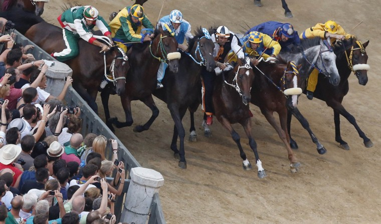 Jockey Jonathan Bartoletti (4th R) of the Lupa (Wolf) parish leads after the start of the Palio of Siena horse race August 16, 2013. (Stefano Rellandini/Reuters)