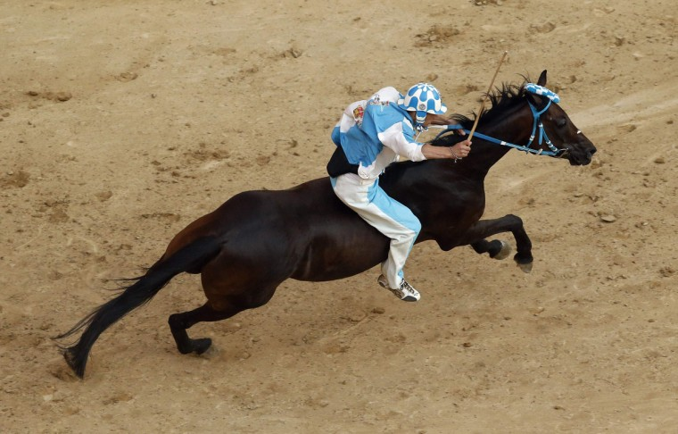 Jockey Giovanni Atzeni of the Onda (Wave) parish competes during the Palio of Siena horse race August 16, 2013. (Stefano Rellandini/Reuters)