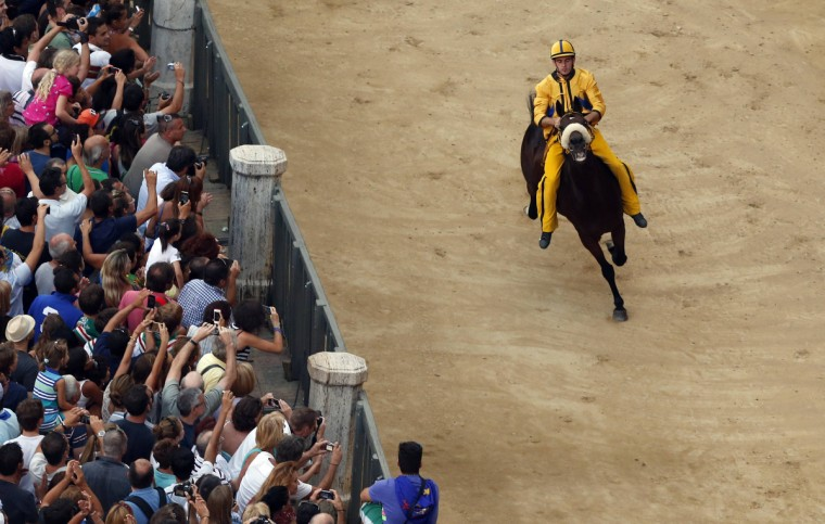 Jockey Giuseppe Zedde of the Aquila (Eagle) parish competes during the fifth of six trial horse races in Del Campo square in Siena August 15, 2013. Every year on July 2 and August 16, almost without fail since the mid-1600s, 10 riders compete bareback around Siena's shell-shaped central square in a bid to win the Palio, a silk banner depicting the Madonna and child. (Stefano Rellandini/Reuters)