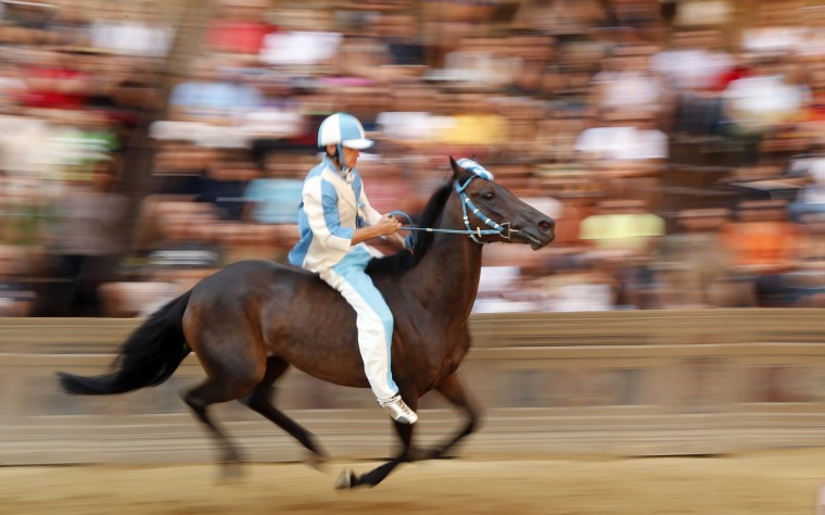 Jockey Giovanni Atzeni of the Onda (Wave) parish competes during the fourth of six trial horse races in Del Campo square in Siena August 15, 2013. (Stefano Rellandini/Reuters)