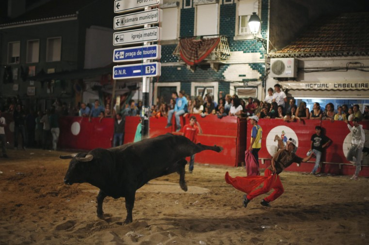 """A man tries to dodge a bull during the """"Barrete Verde e das Salinas"""" festival in Alcochete, near Lisbon. This festival began in 1941, and its main attraction is the release of bulls on the streets of the city. It runs from August 9 to 15. (Rafael Marchante/Reuters)"""
