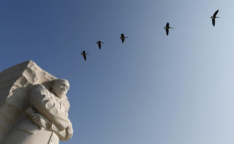 """Geese fly over the the Martin Luther King Jr. Memorial in Washington August 20, 2013. The Rev. Dr. Martin Luther King, Jr., delivered his """"I have a Dream"""" speech on August 28, 1963, on the steps of the Lincoln Memorial during the March on Washington for Jobs and Freedom. This coming week, Washington will play host to an array of events marking the historic anniversary. (Kevin Lamarque/Reuters)"""