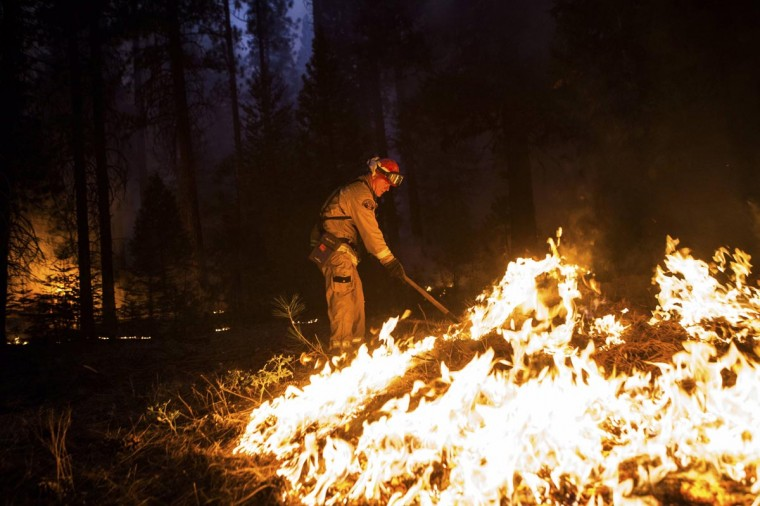 Sacramento Metropolitan firefighter John Graf works on the Rim Fire line near Camp Mather, California, August 26, 2013. The fire has burned 160,980 acres on the northwest side of Yosemite National Park. (Max Whittaker/Reuters)