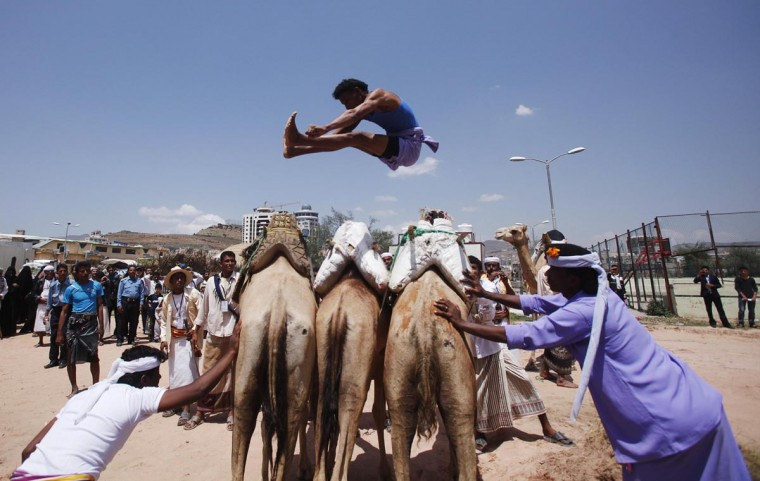 A Bedouin man jumps over camels during the Sanaa Summer Festival in Sanaa August 20, 2013. The two-week festival aims to stimulate domestic tourism and reassure local and international tourists about Yemen's stability. (Khaled Abdullah/Reuters)