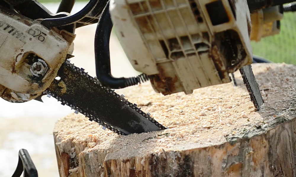 'Masters of the Chainsaw' at the Maryland State Fair