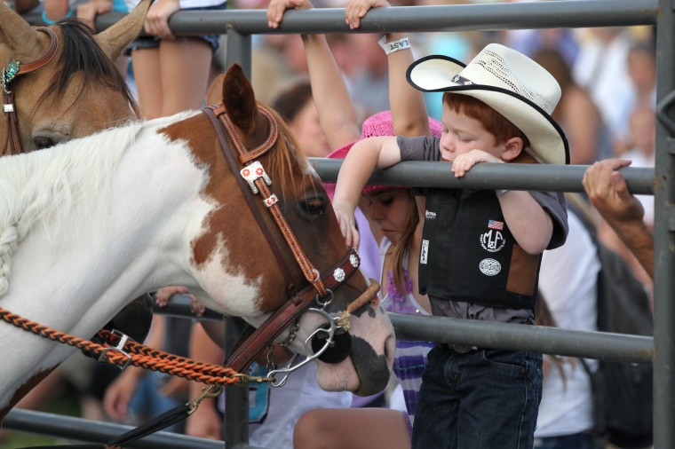 Gavin Kidwell, 4, of Sykesville, pets a horse before the Bull Blast. (Jen Rynda/BSMG)