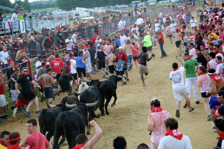 Runners at the Great Bull Run held at the Virginia Motorsports Park on August 24, 2013. (Credit: Kaitlin Newman)