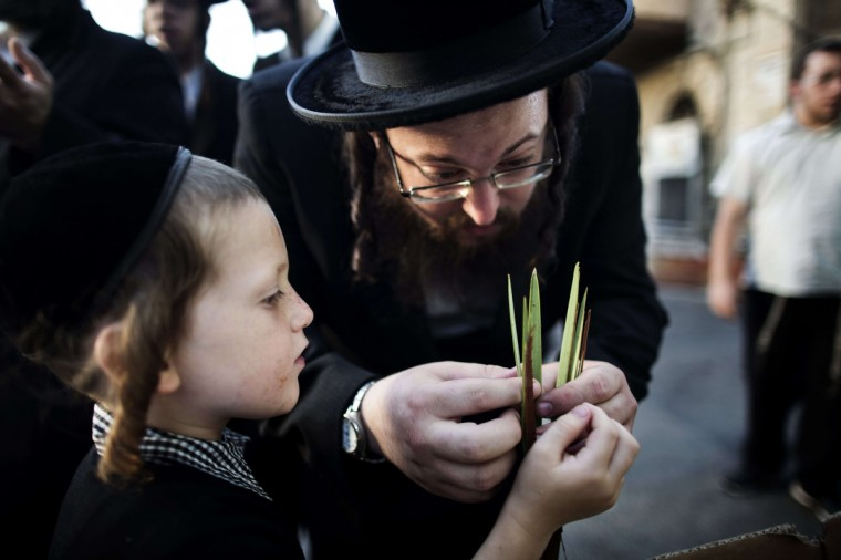 An ultra-Orthodox Jewish man inspects a Lulav (Palm branch), one of four species used during the celebration of Sukkot, the feast of the Tabernacles, in an Ultra Orthodox neighborhood of Jerusalem. The Sukkot feast begins on September 19 and commemorates the exodus of Jews from Egypt some 3200 years ago. (Menahem Kahana/Getty Images)