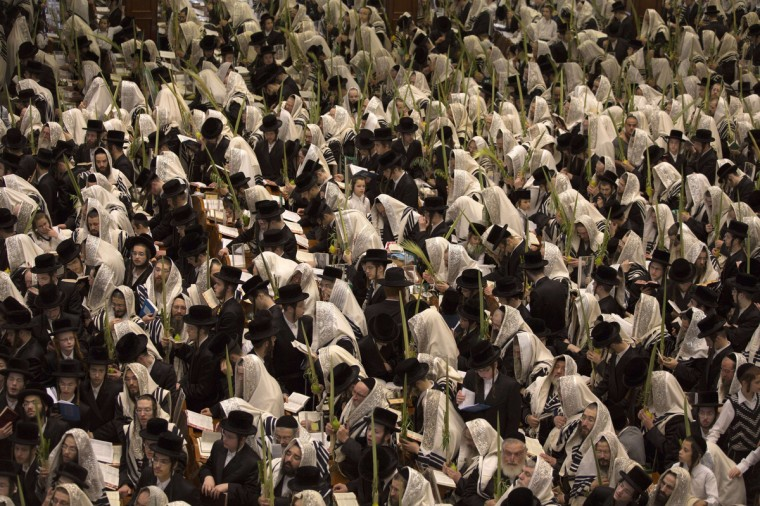 Ultra-Orthodox Jews of the Belz Hasidic Dynasty hold the four plant species: the Lulav (palm leave stalk), the Etrog (citrus), the Hadas (myrtle) and the Arava (willow-branches), as they pray during the last day of Sukkot, or the feast of the Tabernacles, at their synagogue in Jerusalem. Thousands of Jews make the week-long pilgrimage to Jerusalem during Sukkot, which commemorates the desert wanderings of the Israelites after their exodus from Egypt. (Menahem Kahana/Getty Images)