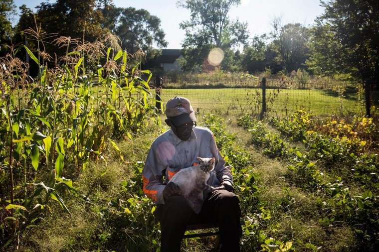 John Fullmore takes a break to pet his cat while picking beans in his garden, which he created in an empty lot next to his house, on September 3, 2013 in Detroit, Michigan. Fullmore, who is originally from Georgia, moved to Detroit in 1958, where he worked as a metal finisher. While urban farming has recently seen a resurgence in Detroit due to the vast number of vacant lots, Fullmore says he has been gardening in Detroit for over 30 years. (Andrew Burton/Getty Images)