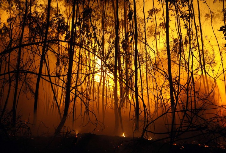 Flames blaze during a wildfire near the village of Barbudo, some 40 km from Vigo, northwestern Spain, in the early hours of September 5, 2013. (Miguel Riopa/AFP/Getty Images)