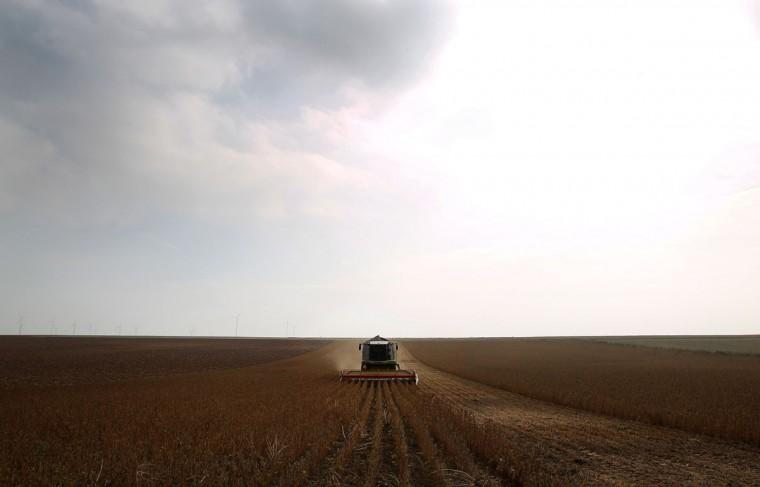 Organic farmer Armin Meitzler-Stoehr is working on his harvester in a soja field in Freimersheim near Alzey, southwestern Germany. (DANIEL ROLAND / AFP/Getty Images)