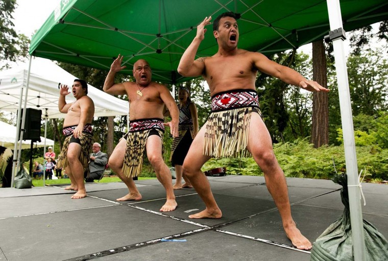 From left, Cain Kerehoma, Wayne Te Kanawa and Wesley Paul, with the Maori Kapa Haka group Te Tini A Maui, perform at the opening of the New Zealand Forest at the Washington Park Arboretum on September 15, 2013, in Seattle, Washington. The $2 million project is the first of five eco-geographic forests to be completed in the Pacific Connections Garden. (Erika Schultz/Seattle Times/MCT)
