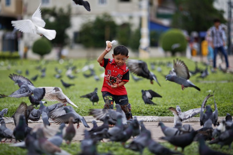 A boy feeds pigeons at a park outside the Royal Palace in central Phnom Penh. (Athit Perawongmetha/Reuters)