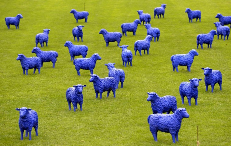 The art project 'Blue Peace Flock' by artists Rainer Bonk and Bertamaria Reetz is pictured in Hamburg-Wilhelmsburg, September 20, 2013. The installation of 100 blue sheep sculptures symbolizing that 'everyone is equal and everybody is important' is on display until Sunday. (Fabian Bimmer/Reuters)