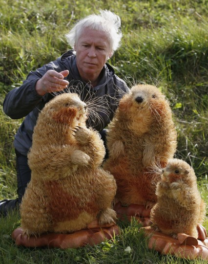 Sergei Bobkov, 56, arranges sculptures of Asian marmots he made from Siberian cedar wood shavings in the village of Kozhany, 207 km (129 miles) southwest of Krasnoyarsk. Bobkov spent one and a half years and used about 210,000 pieces of Siberian cedar to create three marmots sculptures. (Ilya Naymushin/Reuters)