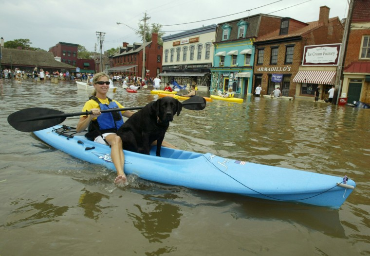"Rhiannon Lewis and her dog ""Spin"" float down the main street of Annapolis, Maryland in a kayak as flood waters batter the store fronts following Hurricane Isabel, September 19, 2003. As much as four feet of water flooded the historic town. (Blake Sell/Reuters photo)"