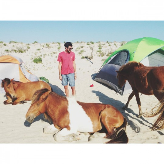 Assateague with Josh and some horses. (Credit: Noah Scialom)